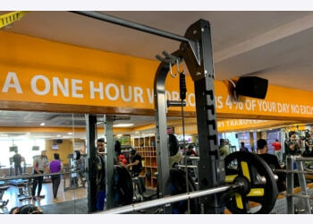 3 Best Gym In Jaipur Expert Recommendations