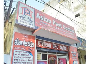 3 Best Pest Control Services in Varanasi - ThreeBestRated