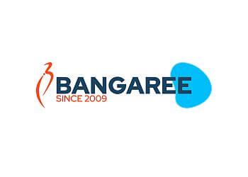 Bangaree Infotech Solutions