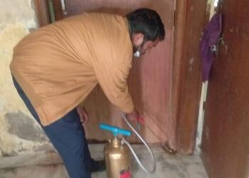 Best Pest & Termite Control Service