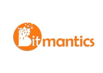 Bitmantics
