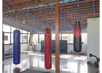 Blue Dragon Mixed Martial Arts