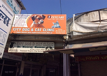 City Dog and Cat Clinic