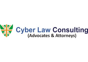 Cyber Law Consulting