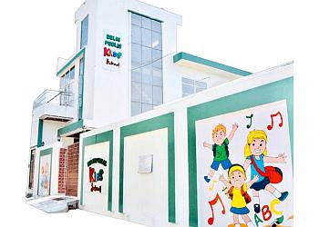 Delhi Public Kids School Bareilly