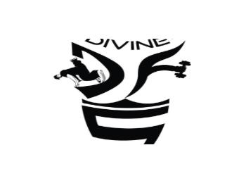 Divine Dance & Fitness Studio