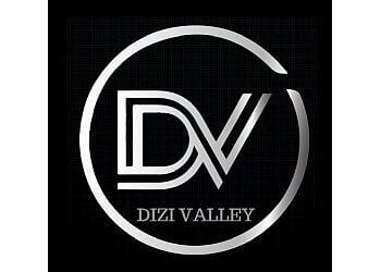 DiziValley