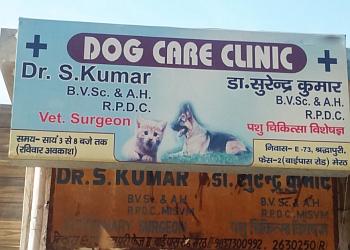 Dog Care Clinic - Dr. S. Kumar