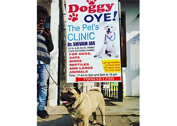 Doggie Oye Pets clinic (Dr. Shivam Jar)