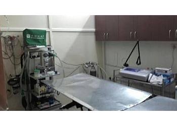 Pet Lazer Surgery Clinic - Dr. Bhupinder Singh