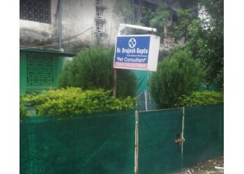 Dr. Brajesh Gupta Pet Clinic