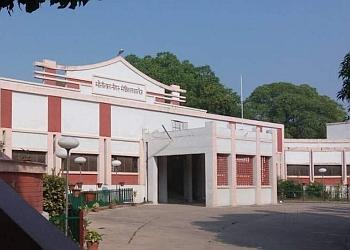 Dr. Manisha Dwivedi, MD, DM
