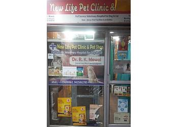 Dr. R.k. Mawai dog clinic & dog surgery center