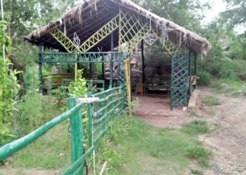 Eco Restoration Park