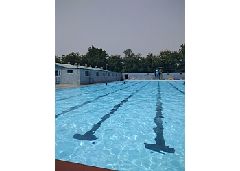 Escorts Swimming Pool