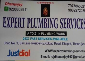 Expert Plumbing Services