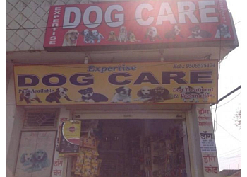 Expertise Dog Care
