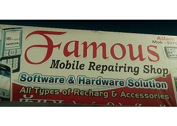 Famous Mobile Repairing Shop