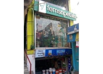 Ferns N Petals - Florist & Gifts Shop
