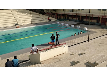 Fitso SEALs Swimming Classes