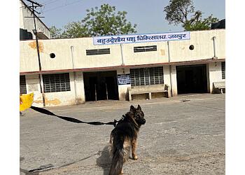 Government Veterinary Polyclinic Hospital