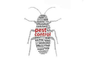 Hygiene Solution Pest Control