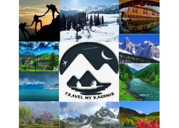 Kashmir Cab Service - Kashmir Tour Packages - Travel My Kashmir