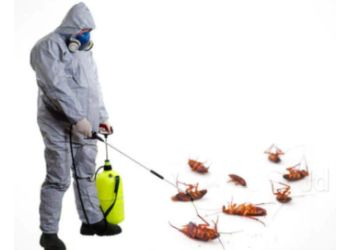 Life Style Pest Control