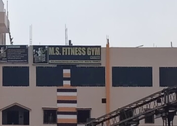 M.S Fitness Gym
