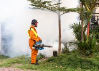 Maha Kal Pest Control Services