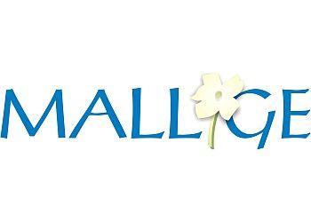 Mallige Medical Centre
