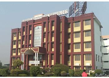 Meerut Institute of Technology