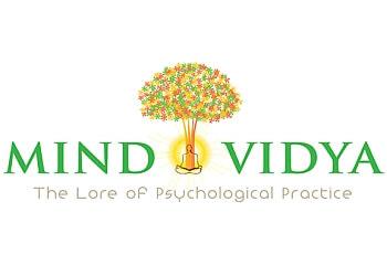 Mind Vidya Inc.
