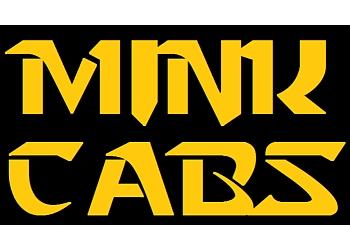 Mink Cabs