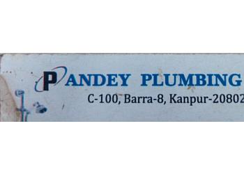 Pandey Plumbing Work