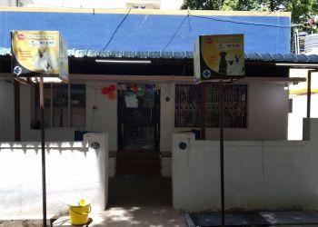 Pet O Pet