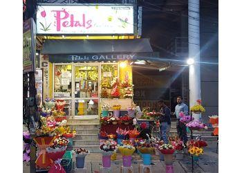 Petals Gallery