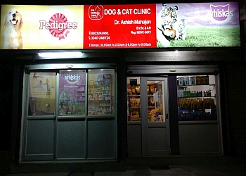 Pet wellness clinic the dog & cat clinic