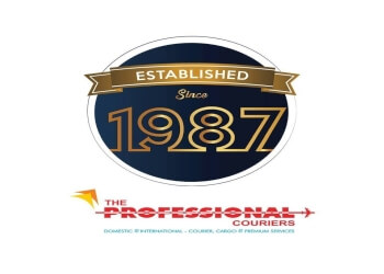 Professional couriers ( domestic & international)