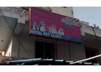 Royal Pet Clinic