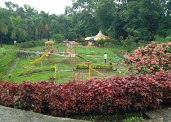 TMC Garden