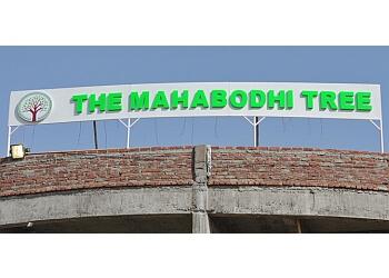 The Mahabodhi Tree