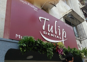 Tulip Dental