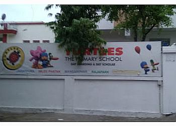 Turtles School