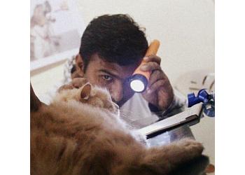 Veterinary Consultancy