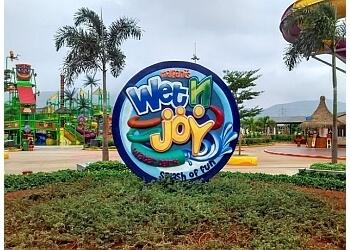 Wet N Joy