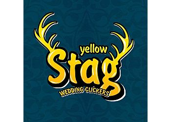 Yellow stag Wedding Clickers